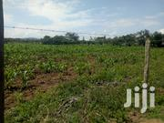 1 Acre For Sale Along Naivasha Mai Mahiu Road | Land & Plots For Sale for sale in Nakuru, Naivasha East
