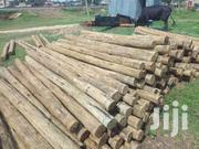 Pressure Treated Electricity Poles 700 | Other Services for sale in Kisumu, Central Kisumu