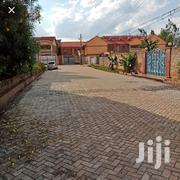 3 Bedrooms House to Let at Safari Park Near USIU | Houses & Apartments For Rent for sale in Nairobi, Roysambu