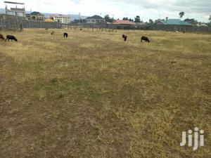 Plots For Sale In Pipeline Nakuru
