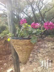 Hanging Baskets | Home Accessories for sale in Nairobi, Karen