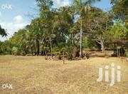 10 Acre Piece Of Land For Sell | Land & Plots For Sale for sale in Kilifi, Malindi Town