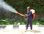 Orkin Pest Control | Cleaning Services for sale in Nairobi, Embakasi