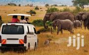 3 Days 2 Nights Birthday In The Wild Experience | Travel Agents & Tours for sale in Nairobi, Ruai