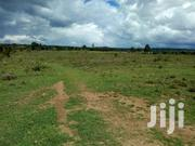 Land For Sale Naivasha NYAMATHI 9km From Naivasha Town. | Land & Plots For Sale for sale in Nakuru, Hells Gate