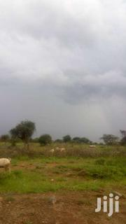 100 By 100 Forn Sale In Ngong Ewauso Kedong | Land & Plots For Sale for sale in Kajiado, Ewuaso Oonkidong'I
