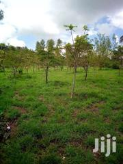 Prime Plots For Sale | Land & Plots For Sale for sale in Nairobi, Nairobi West