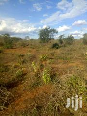 Kithimani Yatta 50by100 For Sale Very Prime | Land & Plots For Sale for sale in Kiambu, Township C