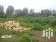 Quarter Acre For Sale At Matasia, Ngong-kiserian Area | Land & Plots For Sale for sale in Kajiado, Olkeri