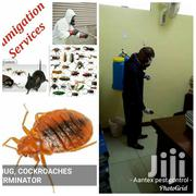 Fumigation Services | Cleaning Services for sale in Nairobi, Kileleshwa