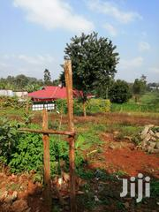 1/8 Acre Plot Karatina | Land & Plots For Sale for sale in Nyeri, Karatina Town