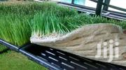 Hydroponic Trays For Sale   Farm Machinery & Equipment for sale in Nairobi, Nairobi Central