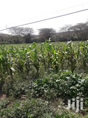 Ridgeways 1/2acre At 32m,Red Soil Titled | Land & Plots For Sale for sale in Nairobi, Karura