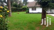 6 Bedroom+Guest Wing, Sq Sitting On Half Acre | Commercial Property For Rent for sale in Nairobi, Kilimani