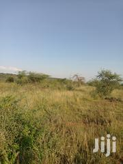 50acres Ilkisumeti at 55k Per Acre | Land & Plots For Sale for sale in Kajiado, Ngong