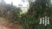 Prime Plot Quater Acre | Land & Plots For Sale for sale in Siaya, West Sakwa (Bondo)