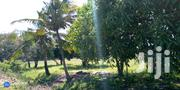 Land On Sale Mrima Bwiti 5.1/2 At 1,000,000/ | Land & Plots For Sale for sale in Kwale, Ramisi