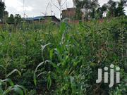 A Commercial Plot for Sale | Land & Plots For Sale for sale in Kisii, Kitutu Central