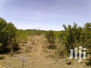 21 Acres For Sale  In Nanyuki / Mukima | Land & Plots For Sale for sale in Meru, Timau
