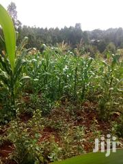 Muchatha Kibutu Plot | Land & Plots For Sale for sale in Kiambu, Muchatha