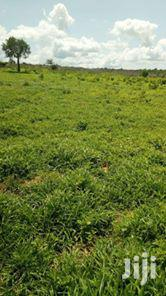 Prime Plots for Sale | Land & Plots For Sale for sale in Mombasa, Magogoni