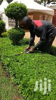 Landscaping Services | Landscaping & Gardening Services for sale in Kileleshwa, Nairobi, Kenya