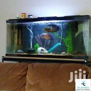 Aquariums And Decor | Pet's Accessories for sale in Nairobi, Nairobi Central