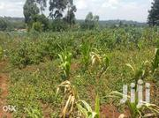 1 Acre Land Is for Sale in Muguga | Land & Plots For Sale for sale in Kiambu, Kinoo