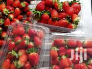 Chandler Strawberries Seedlings Ten Bobs Only | Feeds, Supplements & Seeds for sale in Nairobi, Nairobi Central