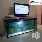 TV Stand Aquarium | Fish for sale in Nairobi, Nairobi South