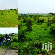 1 Acre Land At Tuala For Sale | Land & Plots For Sale for sale in Kajiado, Oloosirkon/Sholinke