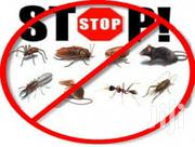 Trusted Bedbugs Experts/Pest Control Services Eg Roaches Etc | Cleaning Services for sale in Nairobi, Zimmerman
