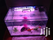 Aquariums for Sale | Pet's Accessories for sale in Nairobi, Nairobi Central