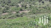 50 Acres for Sale in Soliat, Kericho County   Land & Plots For Sale for sale in Kericho, Soin (Sigowet)
