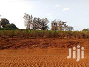 Land for Sale at Ruiru 438acres | Land & Plots For Sale for sale in Kiambu, Murera