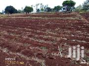 PRIME 3 ACRES WITH BOREHOLE ON SALE   Land & Plots For Sale for sale in Kirinyaga, Wamumu