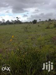 Mbirika 1 Acre Behind Shopping | Land & Plots For Sale for sale in Kajiado, Oloosirkon/Sholinke