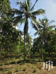 Diani Beach 5 Acres Freehold Plot 20 Mill .. Near Manyatta | Land & Plots For Sale for sale in Kwale, Kinondo