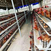 Chicken Cage-galvanized | Livestock & Poultry for sale in Nairobi, Utalii