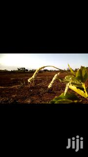 2acres of Land | Land & Plots For Sale for sale in Laikipia, Segera