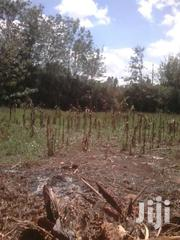 1/8 An Acre Kandisi 500meters From Main Rd (Muthaura Rd) | Land & Plots For Sale for sale in Kajiado, Ongata Rongai
