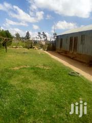 Plot Of 100/100 On Sale At 1.8m | Land & Plots For Sale for sale in Nyandarua, Magumu