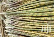Sugarcane From Kisii, Ready For Consuption. Within Nairobi | Meals & Drinks for sale in Nairobi, Roysambu
