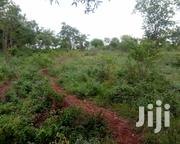 1and a Half Acre in Kiamuringa | Land & Plots For Sale for sale in Embu, Mbeti North