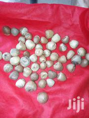Marina Seeds | Feeds, Supplements & Seeds for sale in Mombasa, Bamburi