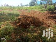 Prime Plot For Sale At Makuyu Behind Ciumbu Town:50 By100ft. | Land & Plots For Sale for sale in Murang'a, Makuyu