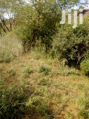 20 Acres Ready for Sale