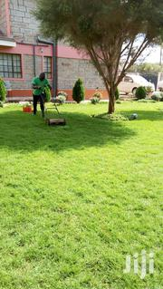 Landscaping Services | Landscaping & Gardening Services for sale in Machakos, Syokimau/Mulolongo
