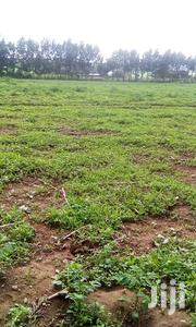 4-1/8plots At Ol-kalou | Land & Plots For Sale for sale in Nyandarua, Karau
