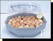60 Eggs Ac/Dc Incubators | Farm Machinery & Equipment for sale in Nairobi, Nairobi Central